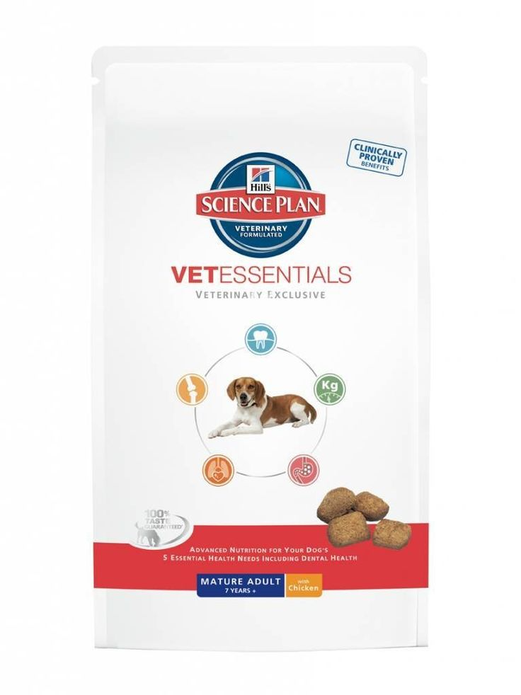 Hills Vet Essentials Mature Adult >>> Read more details by clicking on the image. #CatFood