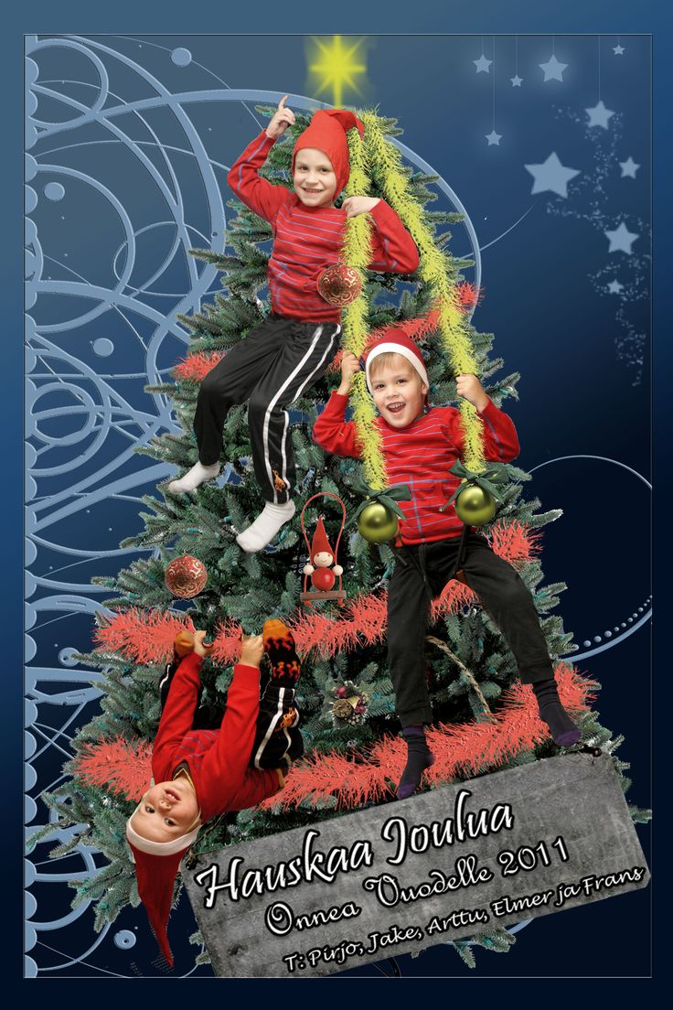 Joulukortti 2010 / Christmas card 2010