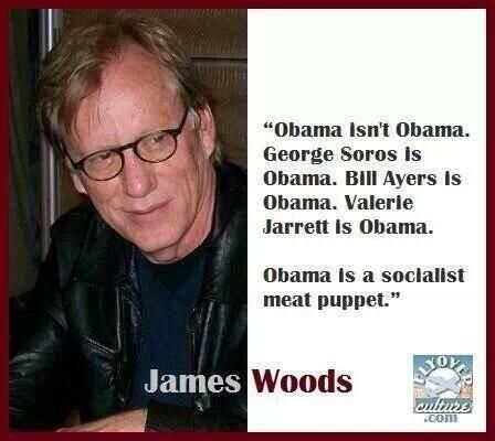 Obama isn't Obama. George Soros is Obama. Bill Ayers is Obama. Valerie Jarrett is Obama. Obama is a socialist meat puppet. ~James Woods