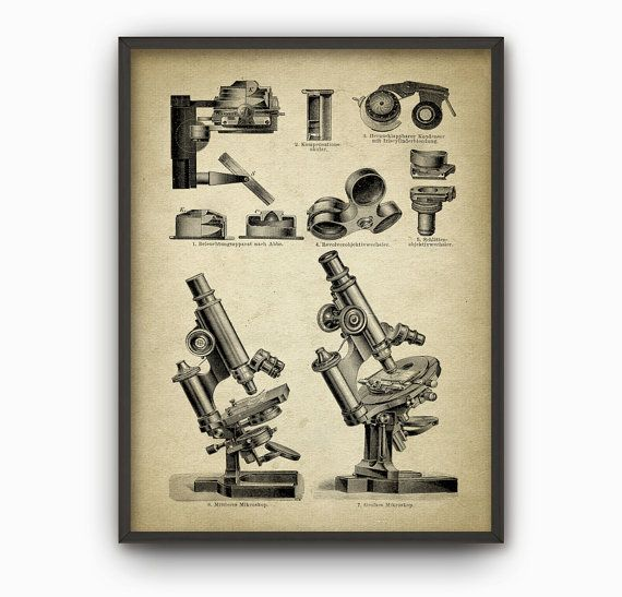 Antique Microscope Print 3  Biology Wall Art by QuantumPrints