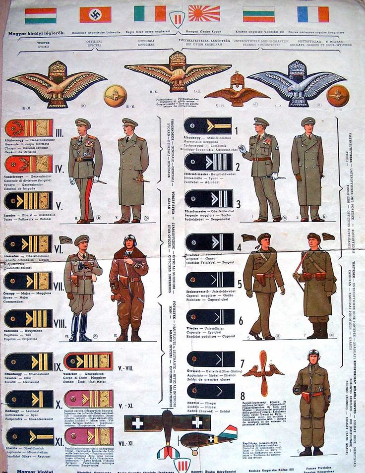 347 best military ranks images on pinterest badge badges and hungary air force uniforms and insignia sciox Choice Image