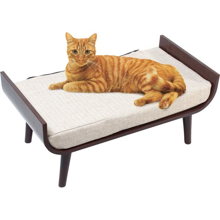 Penn Plax CatWalk furniture has surpassed the traditional concept of cat furniture by offering items that can better be described as pet home décor. These midcentury modern pieces are beautiful, high style designs. CatWalk Luxury Lounger simple and sleek design will welcome any cat for a nap. High-end and stylish, it'll compliment any room.