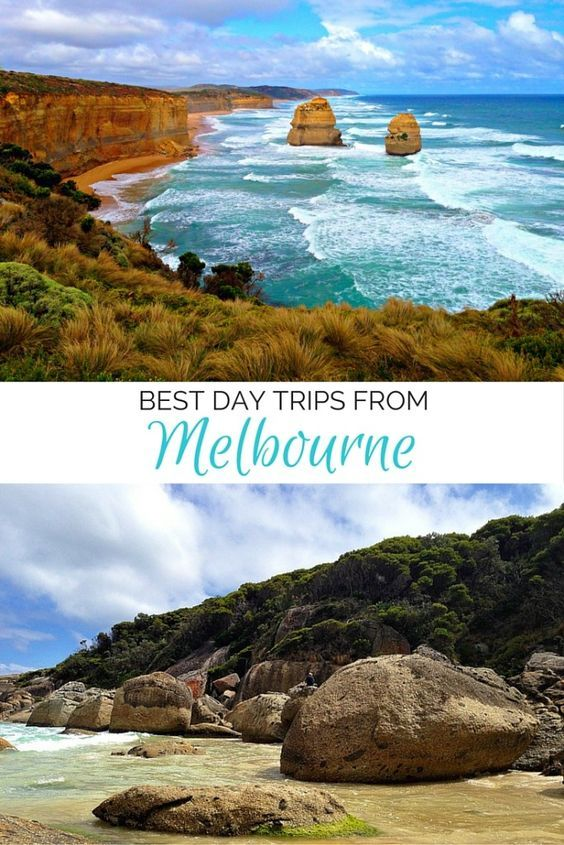 Check out 5 of the best day trips from Melbourne, Australia, including driving the Great Ocean Road, wine tasting in the Yarra Valley, and watching koalas and penguins on Phillip Island!