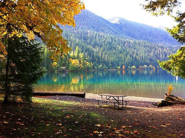 Fall At Lake Crescent Near Port Angeles Washington