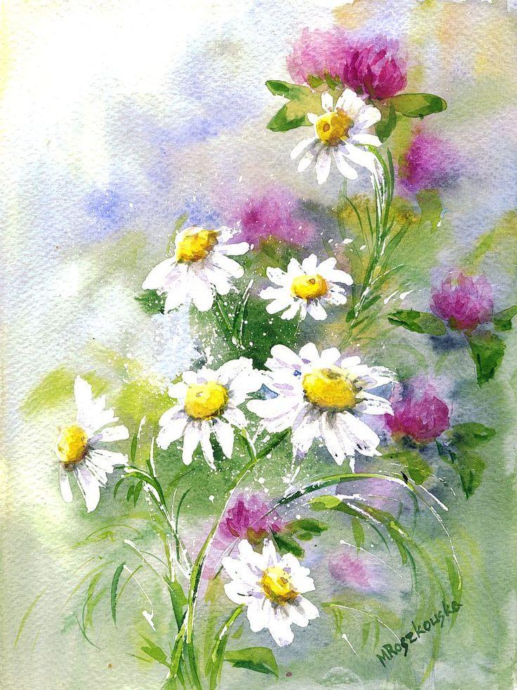 цветы ромашки картинки акварель хороший вариант для
