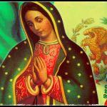 ORACIÓN Y RITUAL DE LA ESCOBA PARA LIMPIAR Y ALEJAR TODO LO MALO Y ATRAER PROSPERIDAD (CASA, NEGOCIO, TRABAJO...) Pido ayuda a Dios Padre, Dios Hijo y Dios