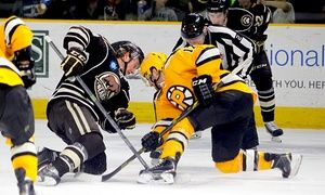 Groupon - Any 2015–16 Regular-Season Providence Bruins Hockey Game in Dunkin' Donuts Center. Groupon deal price: $18