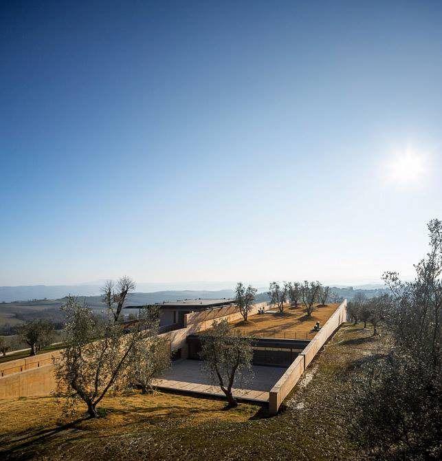 Alvisi Kirimoto + Partners. Bulgari Winery, Podernuovo, Italy (2013). (Photo: Fernando Guerra | Últimas reportagens)