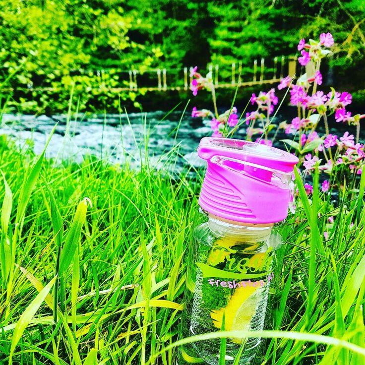#FreshFles #outdoor #healthy #healthydrink #waterdrink #water #waterbottle #fitness #fit