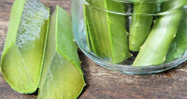 Aloe Vera je široko známe pre svoju schopnosť hydratovať pokožku a liečiť rôzne kožné problémy, vďaka svojmu bohatstvu na antioxidanty, je jeden z najlepších a najznámejších prirodzenou farbou pokožky. Ako správne používať aloe vera? Existuje mnoho spôsobov, ktoré môžete odľahčiť vašej pleti a tu sú