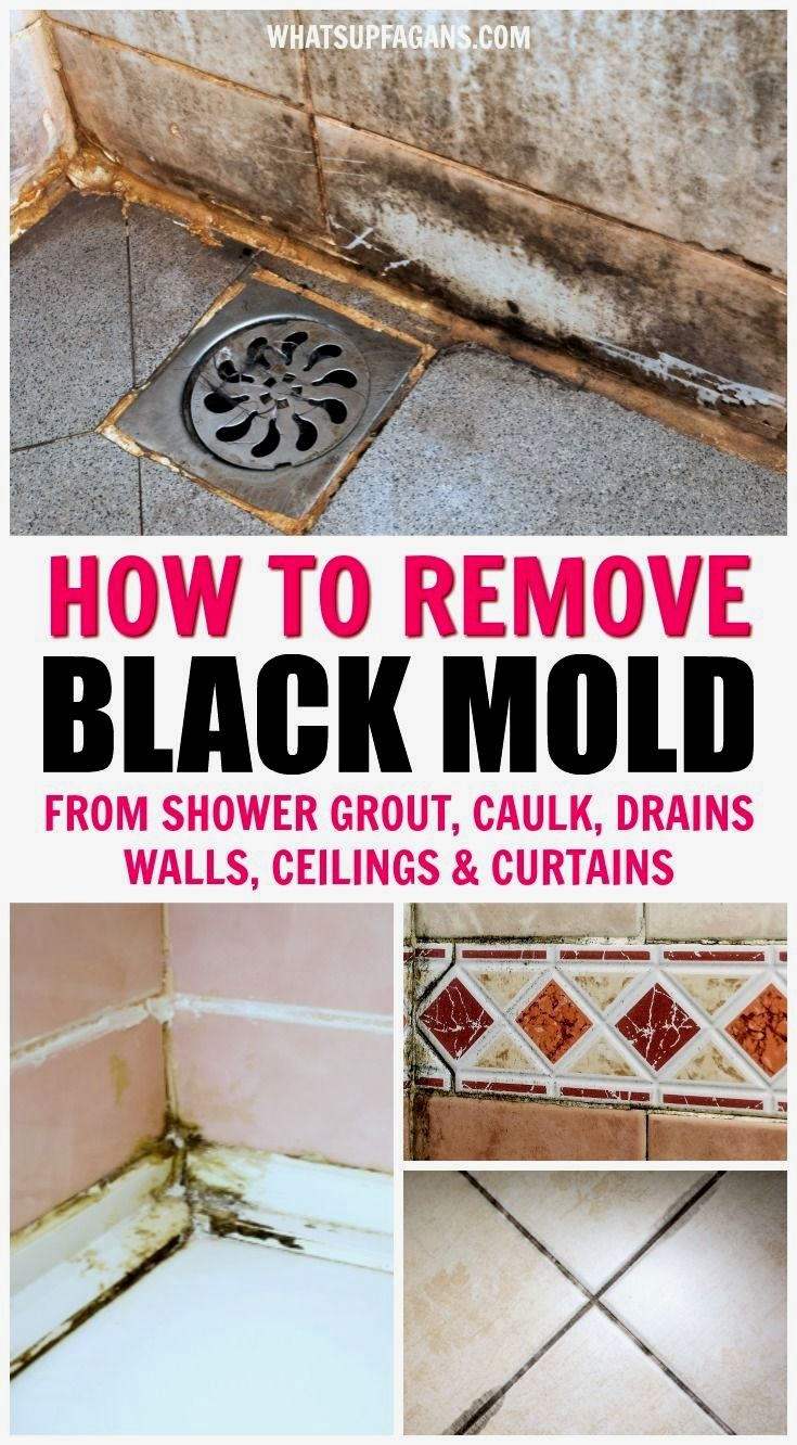 Pin By Mark Ortloff On Household In 2020 Remove Black Mold Shower Grout House Cleaning Tips