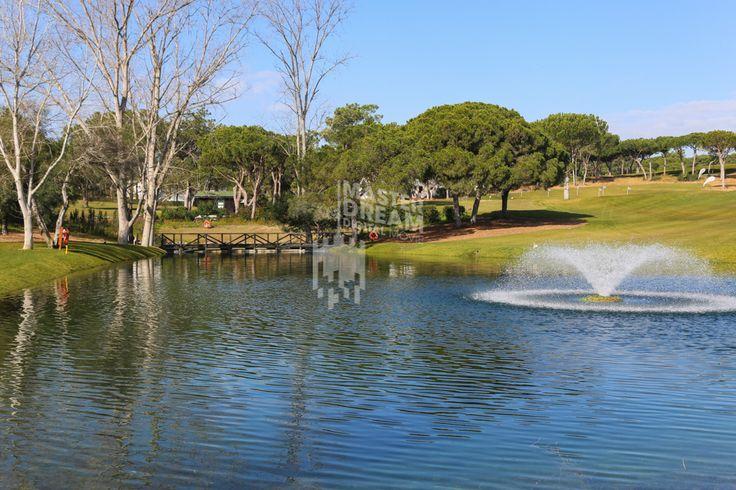 Os campos de golfe algarvios estão inseridos em paisagens deslumbrantes. / The algarve golf courses are located in stunning sceneries.