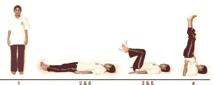 3. Sarvangasanam (Integral Shoulder Pose)