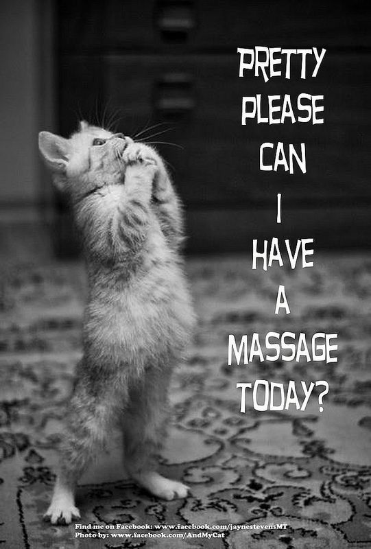 Pretty Please Can I have a massage today? SAY YES TO MASSAGE!#ALauraMassage