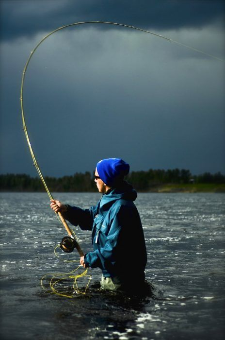 Fly fishing in Pello in the Tornio River in Lapland, Finland