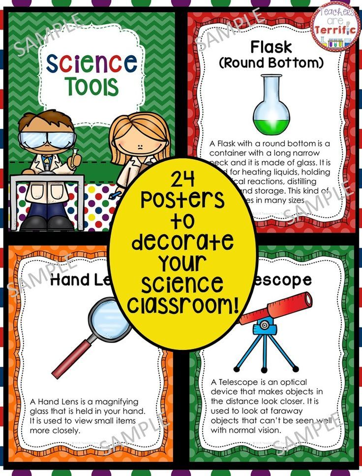 Science Classroom Decorations For Primary ~ Best science tools ideas on pinterest