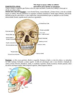 Anatomia humana sobotta volume 1