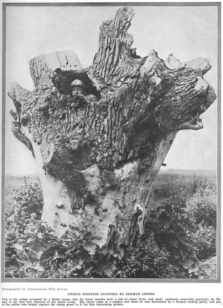 World War 1 - The importance of timber to the Allied military operations in Europe.  Timber was critical to the war effort, and this wasn't only because of the protection it could provide front-line snipers