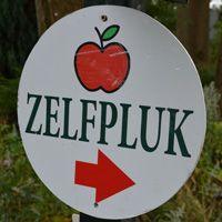 Dat wil ik doen...fruit plukken... op de Olmenhorst >  hebben we gedaan, was jammer dat het megadruk was en er maar een paar appeltjes waren.