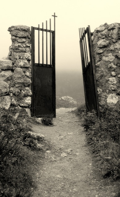 Graveyard's door by echiner