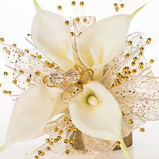 """""""Goldilocks"""" 