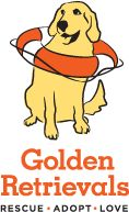 Golden Retrievals - Rescue - Adopt - Love