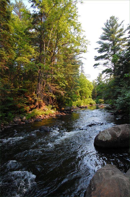 Algonquin Park Trails, Camping in Ontario, Whisky Rapids #algonquinpark