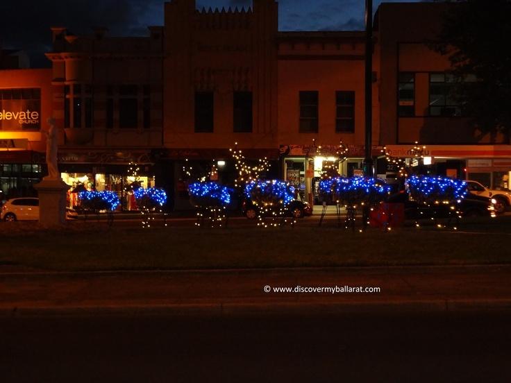 Reindeer & Sleigh: Sturt Street, Ballarat.