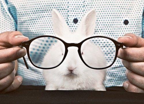 haha i do this with my bunny