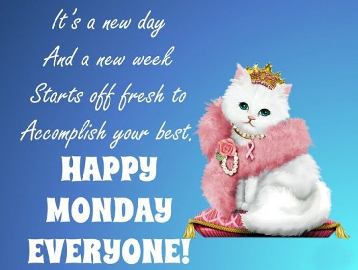 Best And Catchy Happy Monday Quotes And Sayings Happy Monday Quotes Happy Monday Funny Monday Quotes