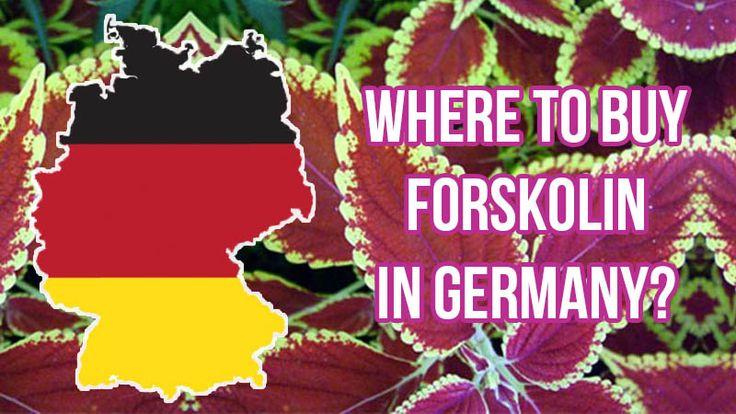 Where to Buy Forskolin in Germany?