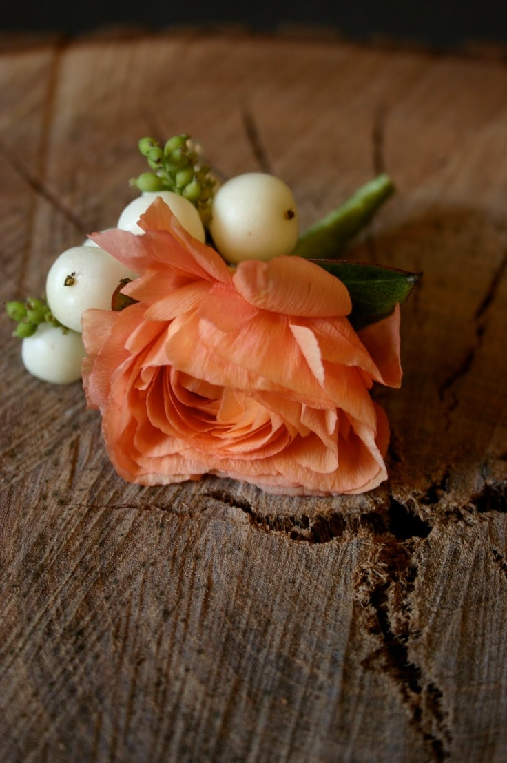 Ranunculus and winterberry boutonniere