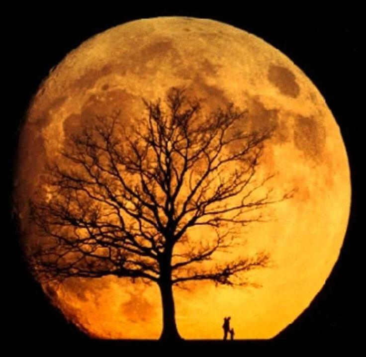 Full Moon Orange