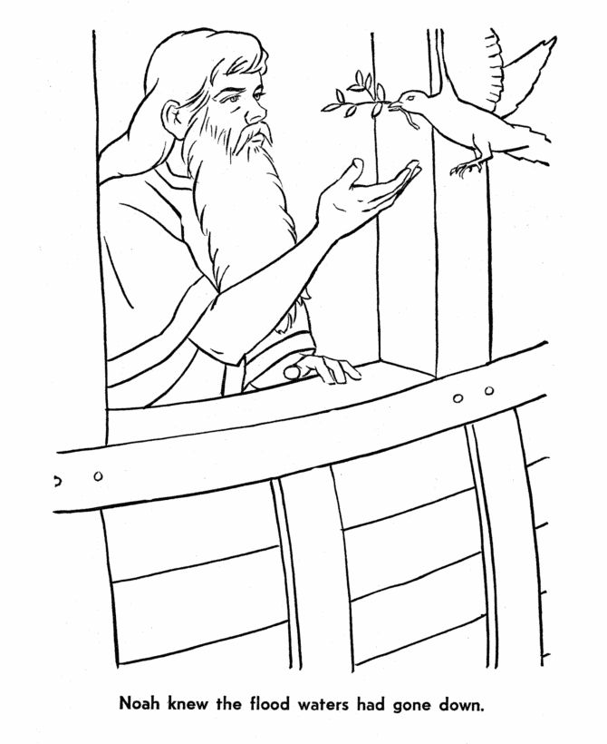 noah coloring page - 14 best noah and the flood bible activities images on