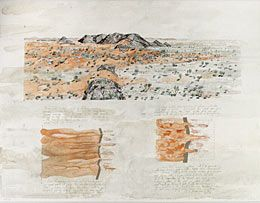 John Wolseley National Gallery of Australia artist profile
