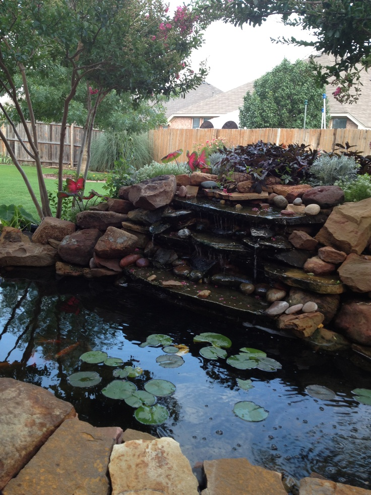 17 best images about koi pond on pinterest gardens july for Koi pool water gardens thornton