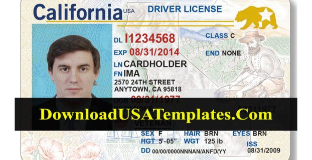 California Driver License New Download Updated Latest File Drivers License Ca Drivers License Drivers License California
