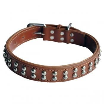 Tow Row Silvery Round Rivet Cowhide Genuine Leather Pet Dog Collar