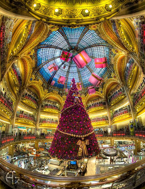Galleries Lafayette, Provence-Opera, Paris, Ile-de-France, France.  Christmas Tree, by AG.