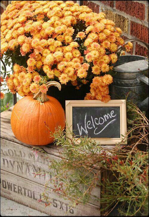 Willkommen Schild für Geschenketisch  Autumn deco. inspiration. ☆