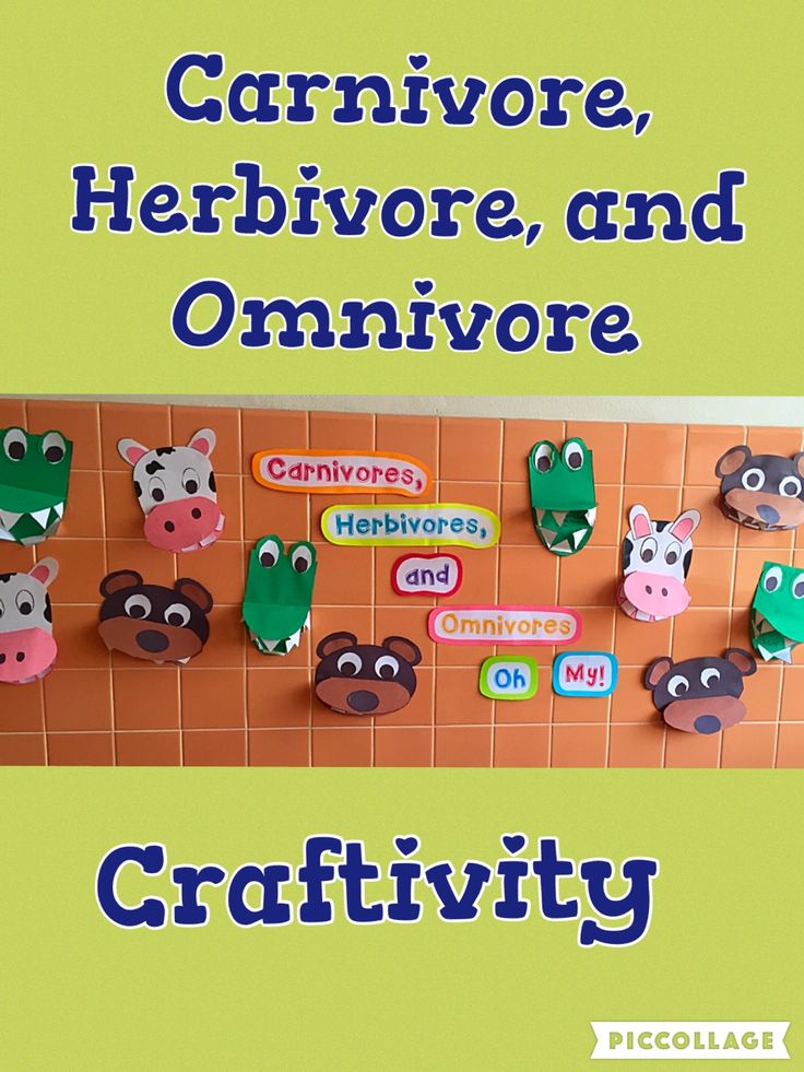 While studying about carnivores, herbivores, and omnivores, we made these animals.  This is my favorite display of the year!
