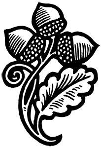 Acorns | Briar Press | A letterpress community