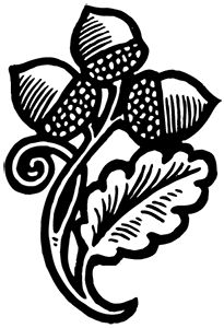 Acorns | Briar Press | A letterpress community                                                                                                                                                                                 More