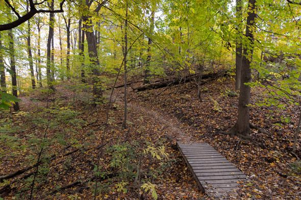 Hiking trails in Toronto exemplify the city's quaint, and somewhat hyperbolic…