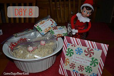 Elf on a Shelf - Candy Cane Gardening Kit