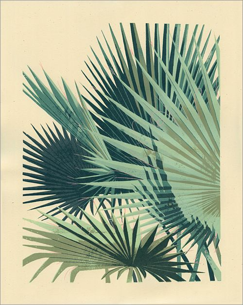 Love this print: Palm Plant 1, Chris Turnham via GalleryNucleus.com $35
