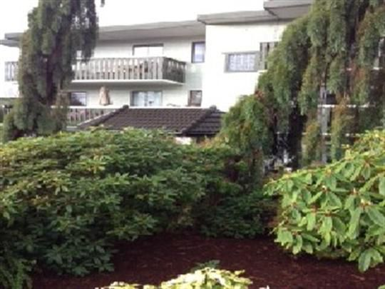 9 Best Sansar Apartments Apartment For Rent In British Columbia Images On Pinterest British