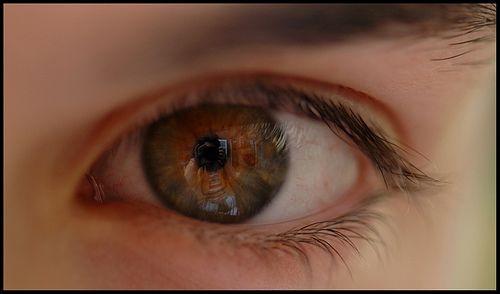 bruine ogen - Google zoeken