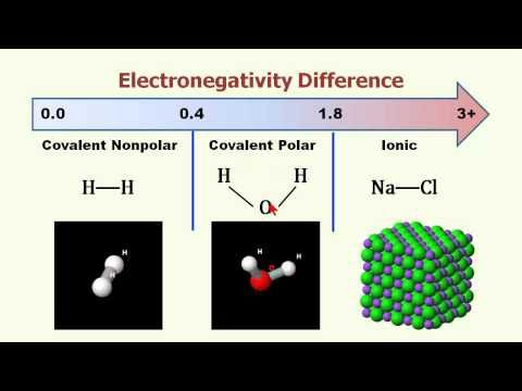 1601 best Chemistry images on Pinterest Physics, Chemistry and - electronegativity chart template