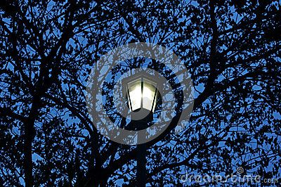 The lamp in Benjakitti park, Bangkok, Thailand.